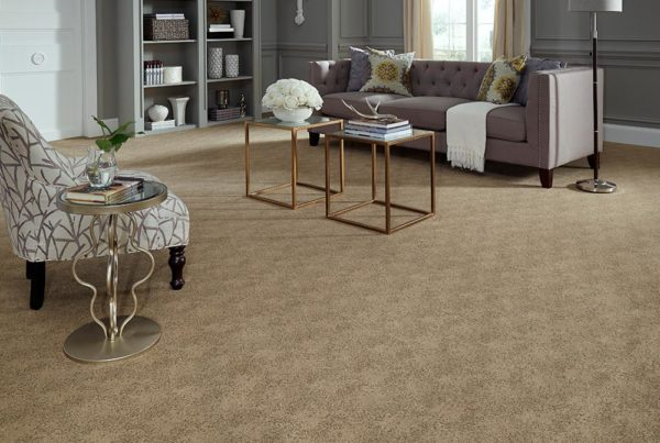 A la Mode Fashion Destination CarpetsPlus Stainmaster Carpet