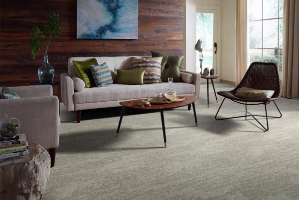 Attica Performance Destination CarpetsPlus Anso Carpet