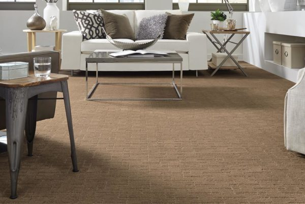 Avant Avenue Fashion Destination CarpetsPlus Stainmaster Carpet