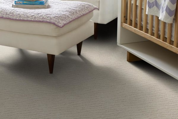 Brizo Performance Destination CarpetsPlus Anso Carpet