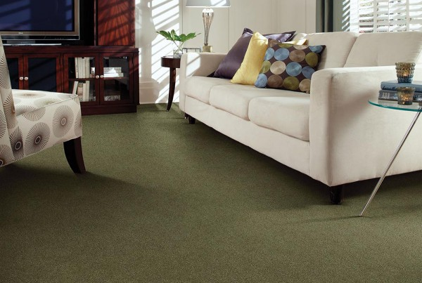 CarpetsPlus Color Destination