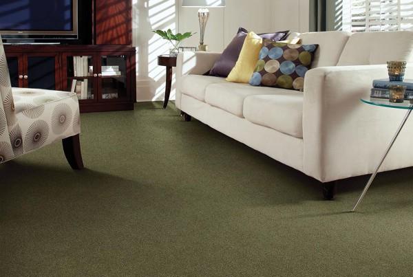CarpetsPlus Color Destination