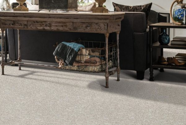 Galatea Performance Destination CarpetsPlus Anso Carpet