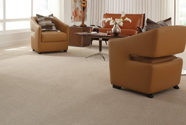 Golden Hour Fashion Destination CarpetsPlus Anso Carpet