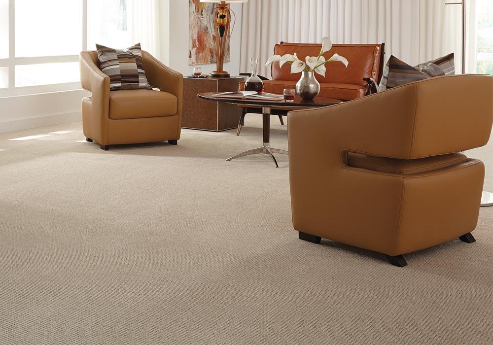 Golden Hour Fashion Destination CarpetsPlus Anso Carpet