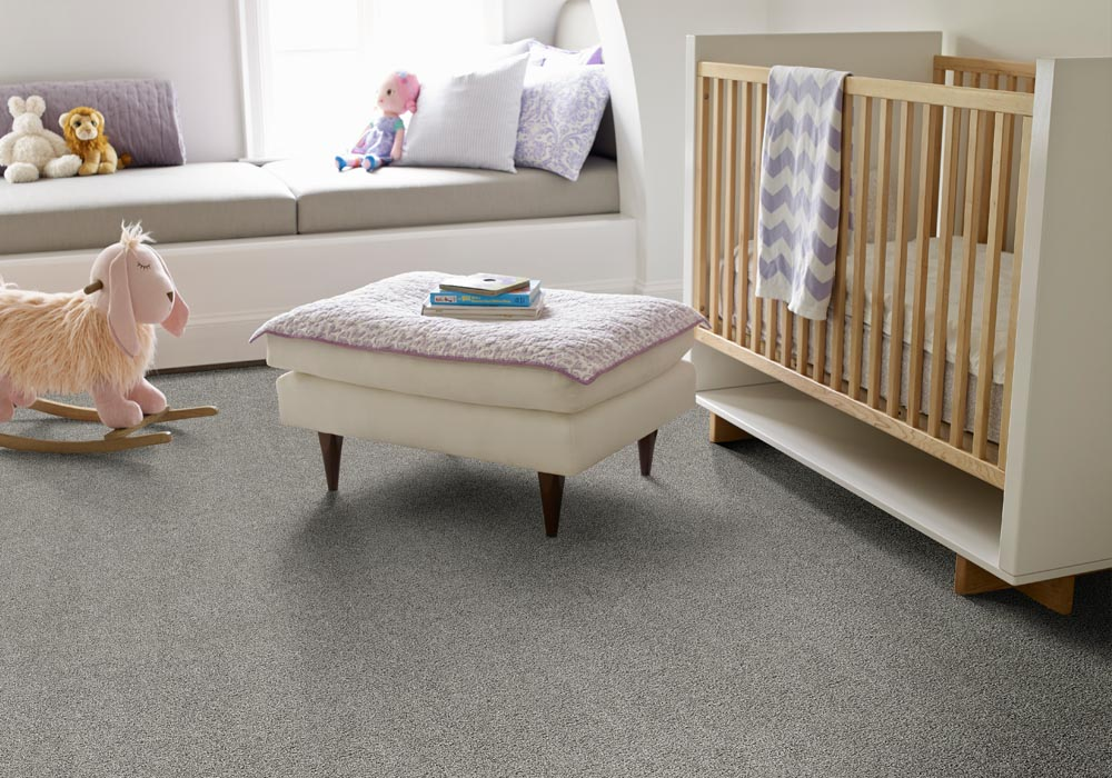 Hydrus Performance Destination CarpetsPlus Anso Carpet