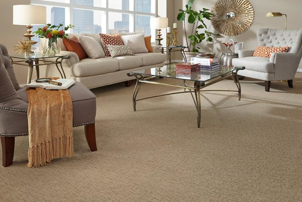 In Thing Fashion Destination CarpetsPlus Stainmaster Carpet