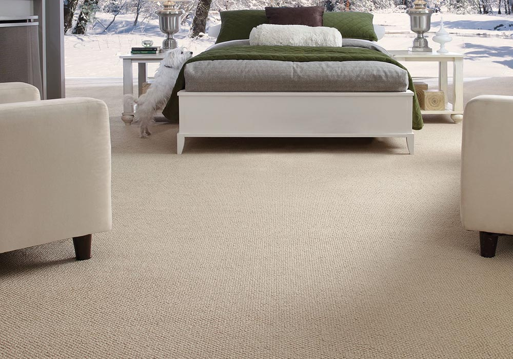 Innovate CarpetsPlus Fashion Destination Stainmaster carpet