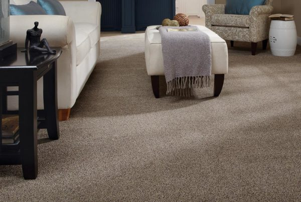 Luxe Loft Fashion Destination CarpetsPlus Stainmaster Carpet