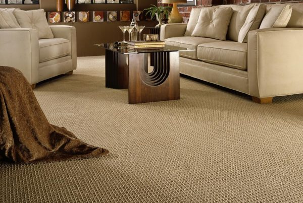 Mod Couture Fashion Destination CarpetsPlus Anso Carpet