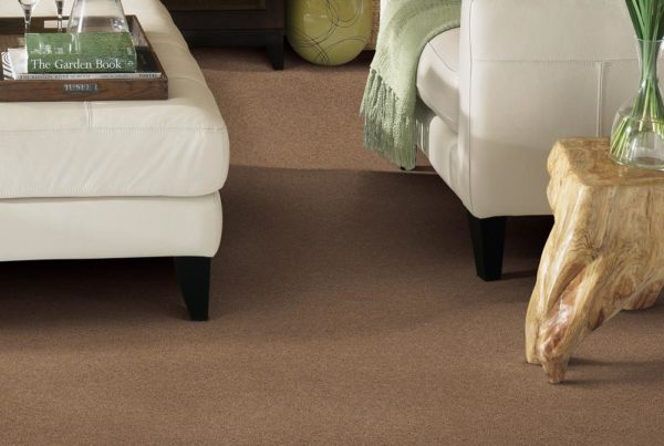 Olympus Performance Destination CarpetsPlus Anso Carpet