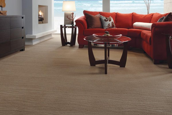 CarpetsPlus Pattern Destination Exhilarated