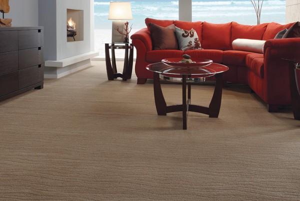 CarpetsPlus Pattern Destination Exhilarated