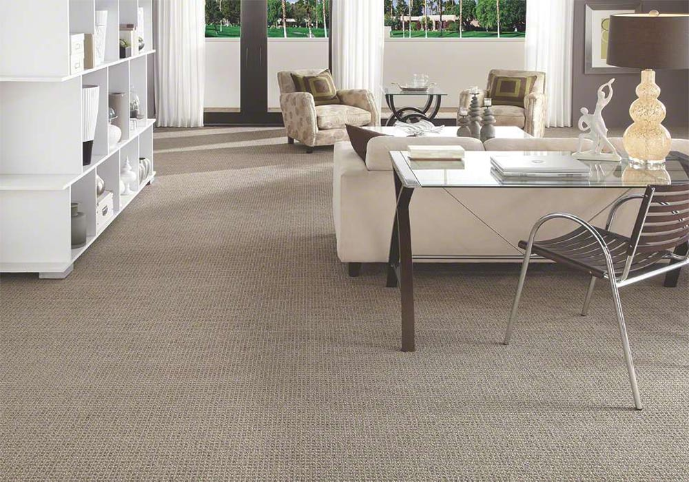 Polished Touch Fashion Destination Stainmaster carpet