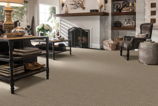 Rapturous Pattern Destination CarpetsPlus Stainmaster Carpet