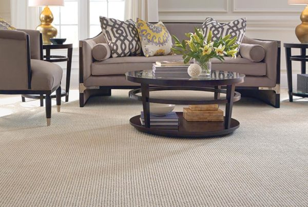 Runway Trend Fashion Destination CarpetsPlus Anso Carpet