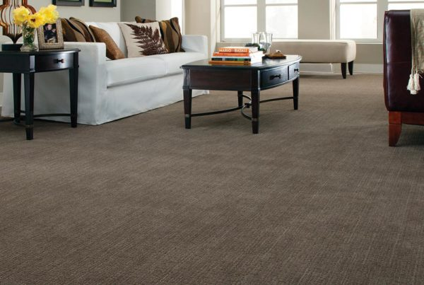 Street Savvy Fashion Destination Stainmaster carpet