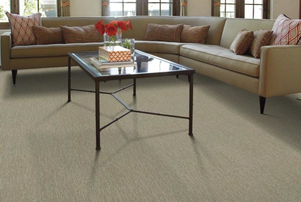 Thetis Performance Destination CarpetsPlus Anso Carpet