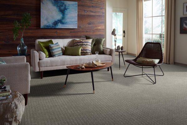 Toile Classic Ultra Touch Satin CarpetsPlus Anso Carpet